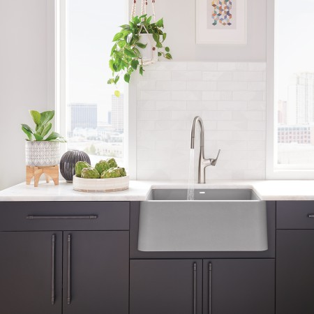 BLANCO IKON Farmhouse Sink