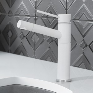 Stainless Steel and Granite Composite Wheelchair Accessible Kitchen SInk